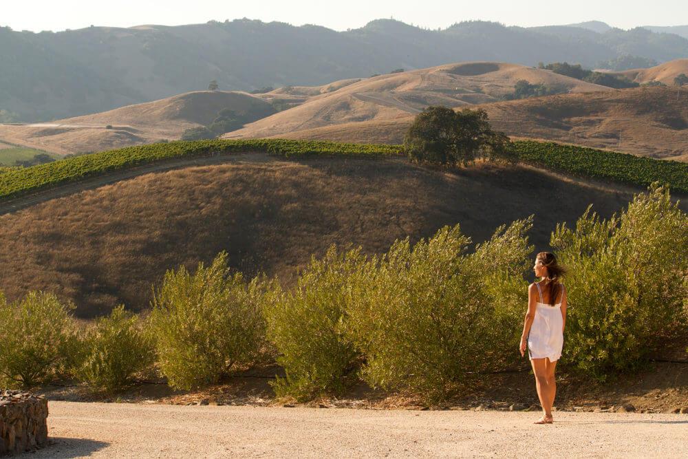 Napa Valley Photographer | Amanda Mathson Photography