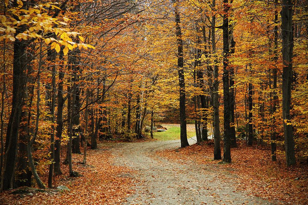Autumn in Stowe Vermont